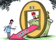 2021年中国基金行业市场前景预测及投资战略研究