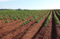 2020年中国土壤修复市场现状分析,行业市场拓展能力至关重要「图」