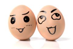 中秋节过后,鸡蛋现货价格如期走弱蛋价可能即将进入熊市周期