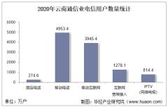 2020年云南通信业电信用户、电信业务及电信资产统计分析