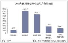 2020年陕西通信业电信用户、电信业务及电信资产统计分析