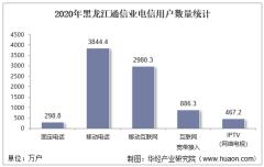 2020年黑龙江通信业电信用户、电信业务及电信资产统计分析