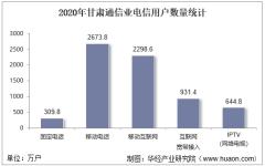 2020年甘肃通信业电信用户、电信业务及电信资产统计分析