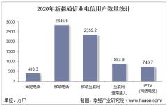 2020年新疆通信业电信用户、电信业务及电信资产统计分析