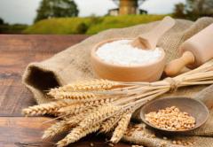 推动粮食产业高质量发展 多措并举粮食安全有保障