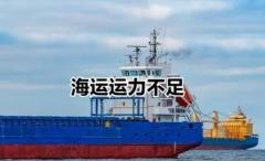 受疫情影响,东南亚的豆腐也涨价了!集装箱和物流运力短缺,导致国际航运港口的吞吐速度大幅降低!「图」